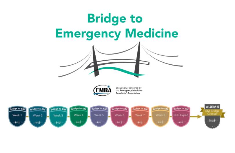 Bridge to EM ALiEMU informational flyer